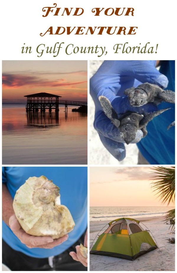 Find Your Adventure in Gulf County, Florida!