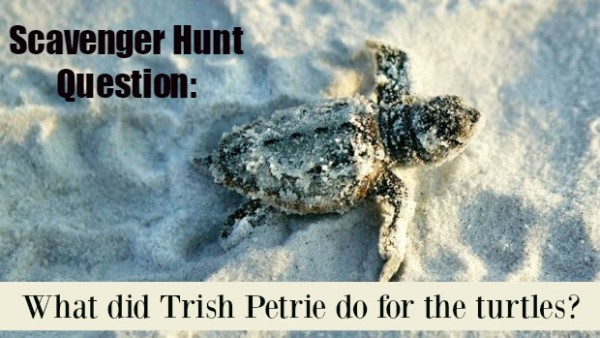 GCFL Scavenger Hunt Question: What did Trish Petrie do for the turtles?