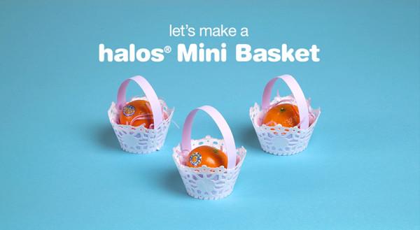 Halos_Blog_Basket_1