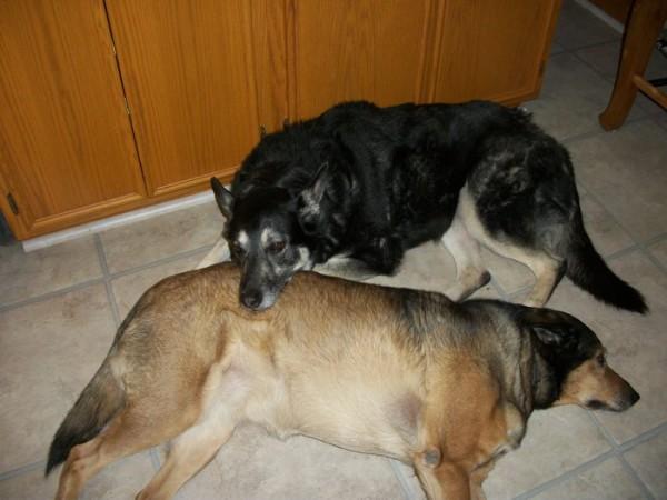 Tasha and Maia Snuggling
