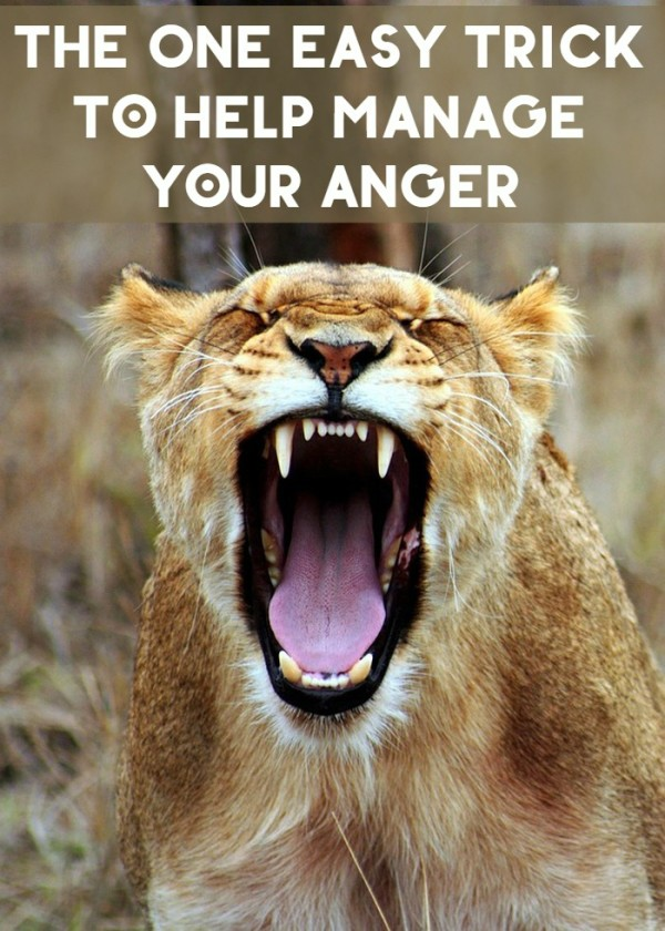 I used to be a really angry person. Like really, really angry. It took very little to send me into a screaming, yelling, crying, stomping my feet, red-faced fit. Then I taught myself one little trick that stopped it all. Anger? Manged. Just like that.