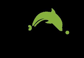 dolphin-logo-big