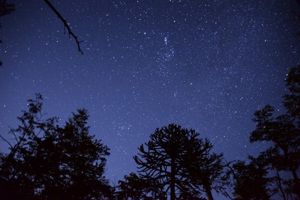 What do the stars have to do with backyard literary adventures? Find out!
