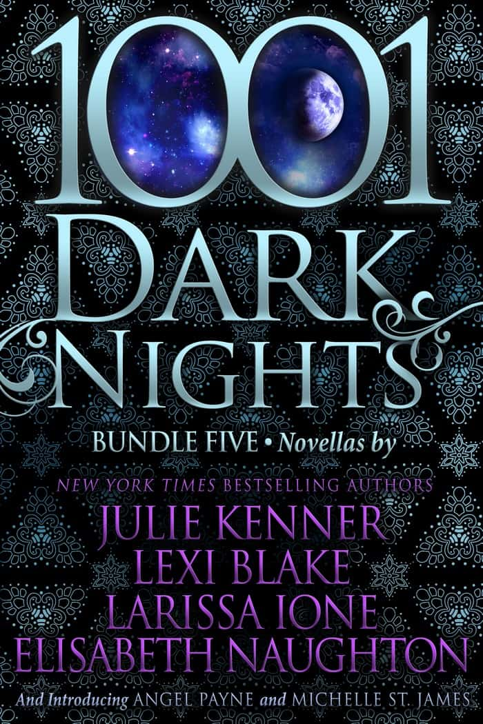 Looking for a steamy new beach read? How about 6? Grab the 1001 Dark Nights bundle and dive in!