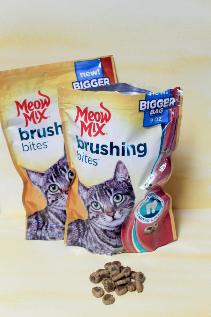 Keep your cat's dental health on track with Meow Mix Brushing Bites! Check them out!