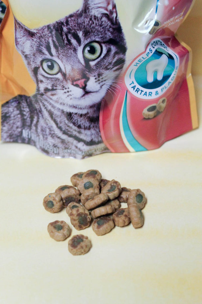 My cat loves the crunchy goodness of Meow Mix Brushing Bites! I love that they keep her teeth healthier!