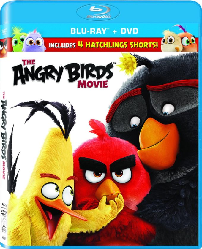 The Angry Birds Movie on Blu-Ray: Perfect for Mother/Son Movie Night!