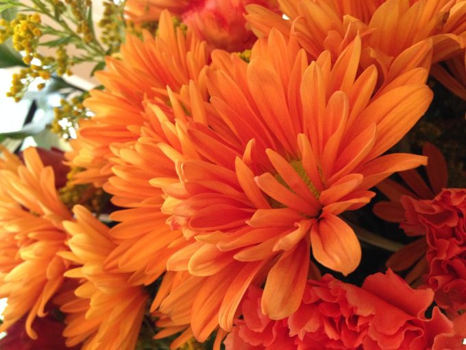 How To Decorate For Fall And Cozy Up Your Home Pretty