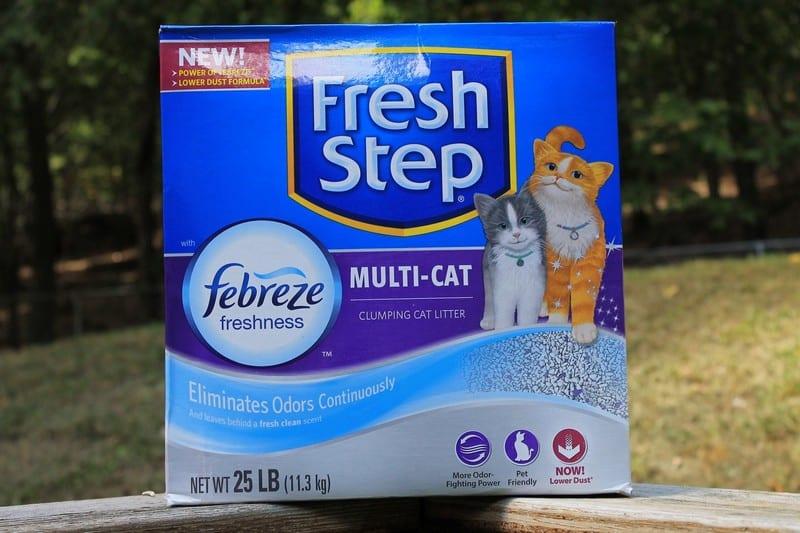 no more cat litter