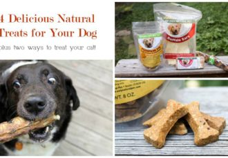 only-natural-pet-ways-to-treat-your-dog-f