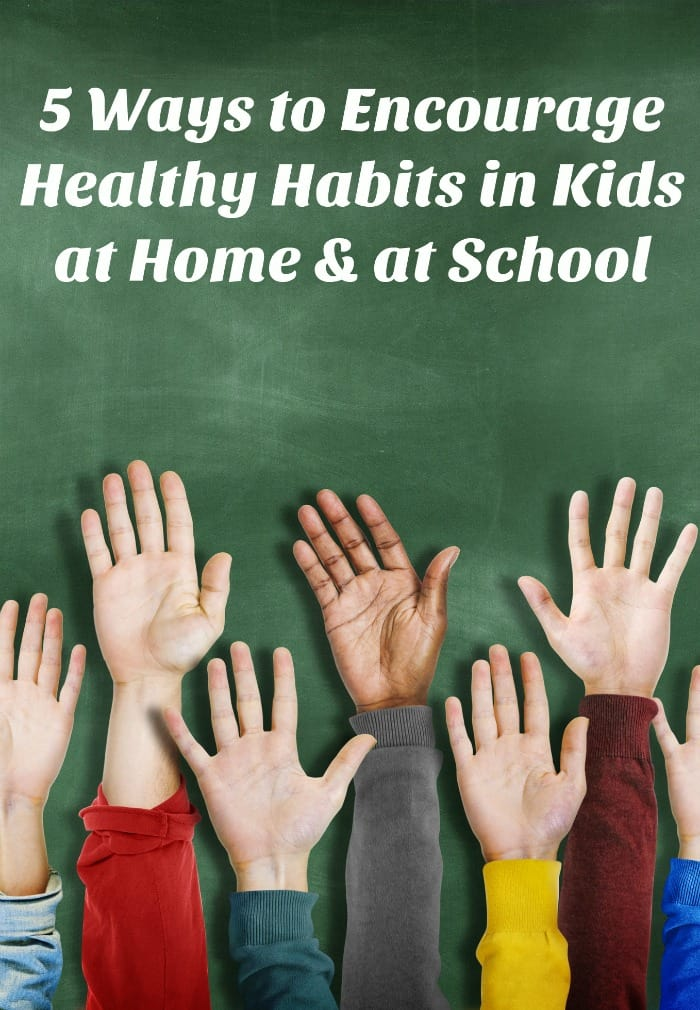 Check out 5 things you can do at home to help support your school's Healthy Habits program & keep all of our kids healthier this school year!