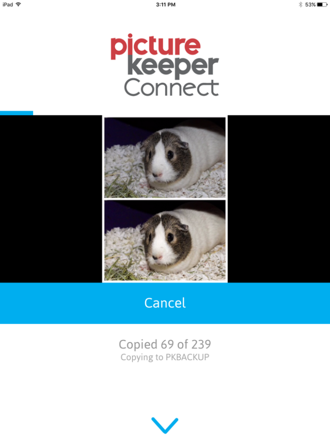 picturekeeperconnect-app-ss-3