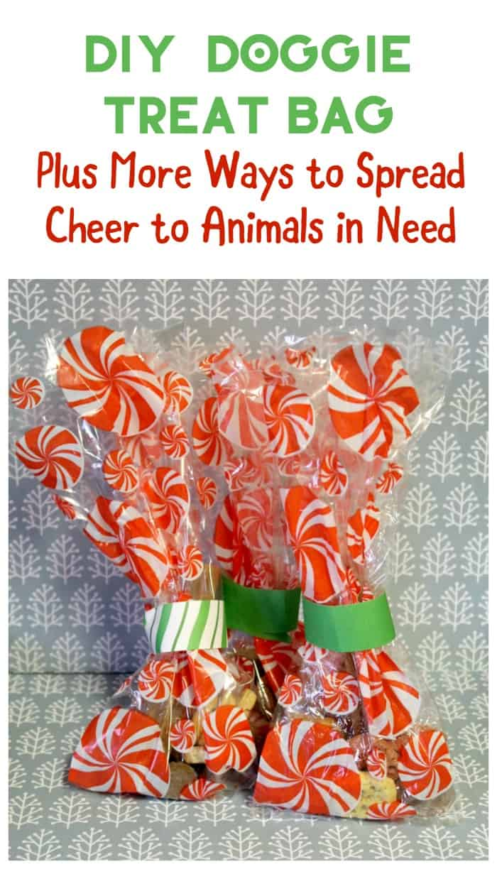 Want to spread a little extra cheer this holiday season? How about bringing some joy to a homeless pet with a DIY doggie bag? Plus check out other tips to help homeless pets!