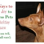 Be a Joy Maker & Spread Cheer to Animals in Need During the Holidays