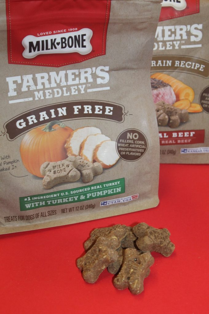 Finding Grain-Free & Whole Grain Dog Biscuits Is Easier Than Ever!