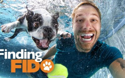 Finding Your Canine Soul Mate: How Do You Know When It's True Love? #FindingFido