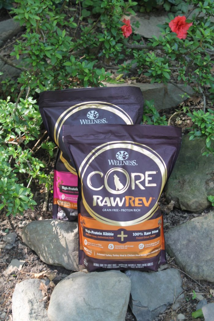 Support your active dog with Wellness CORE RawRev!