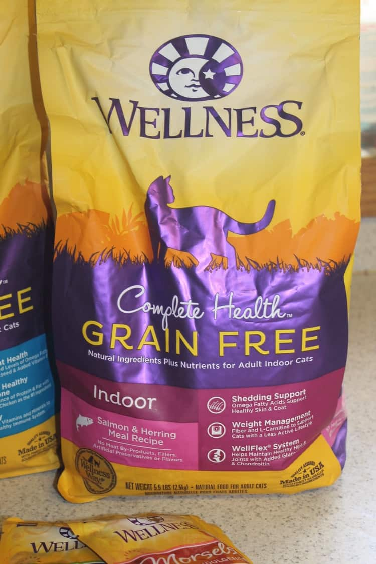 How To Feed Even The Most Finicky Cats A Healthy Diet