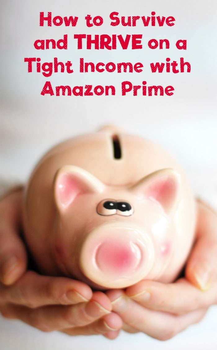 Check out all the ways Amazon Prime helps my family survive AND thrive on an extremely tight budget!
