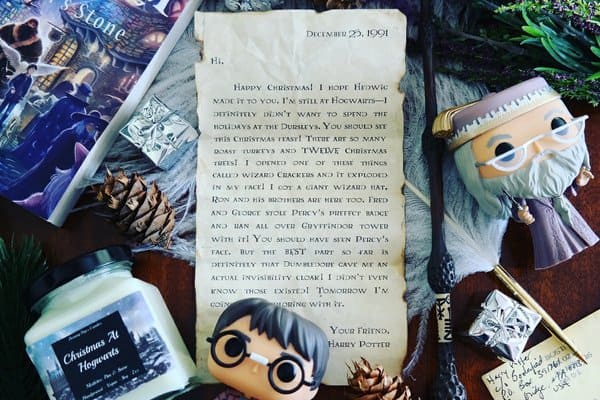 Bookified 7 Must-Have Subscription Boxes for Harry Potter Fans