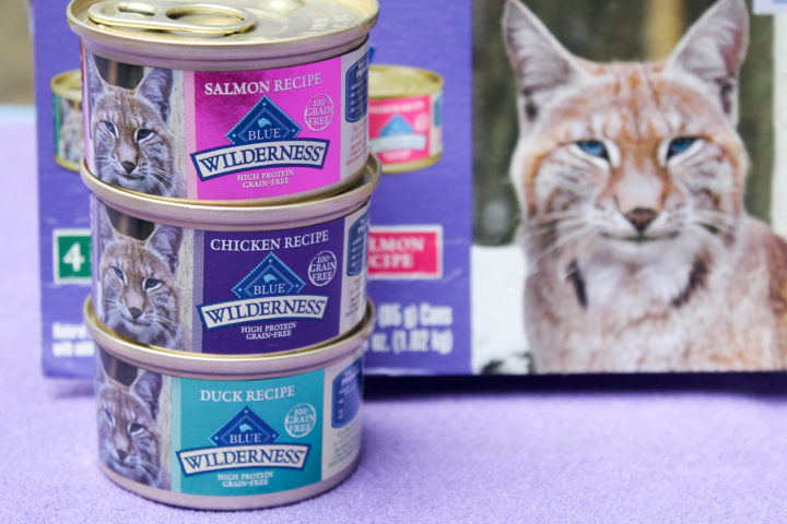 Blue Cat Food 2 2 Why Should You Feed Your Cats Canned Food?