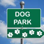 What Not to Do When Taking Fido to the Dog Park