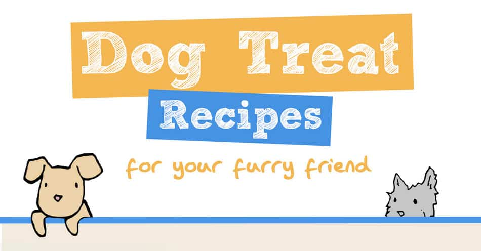 7 Super Easy Dog Treat Recipes for Your Furry Best Friend