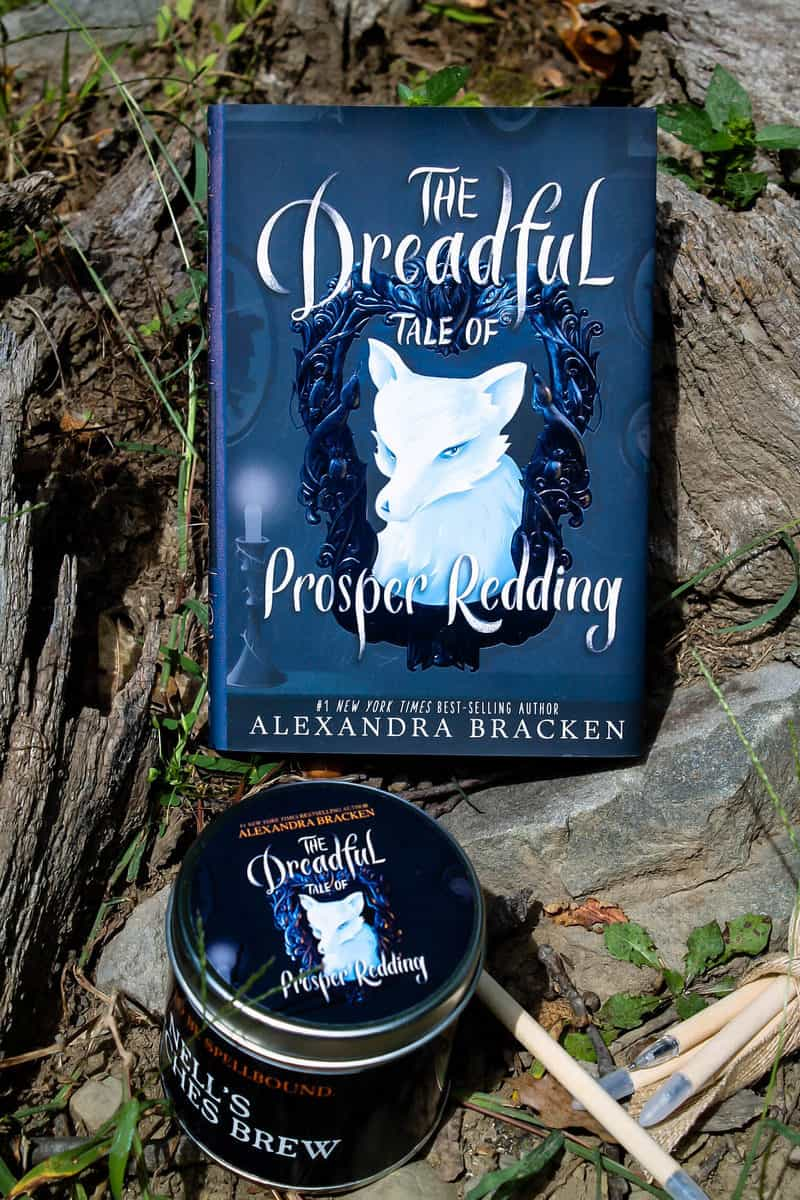 Dreadful Tale of Prosper Redding Book 1 Review Policy