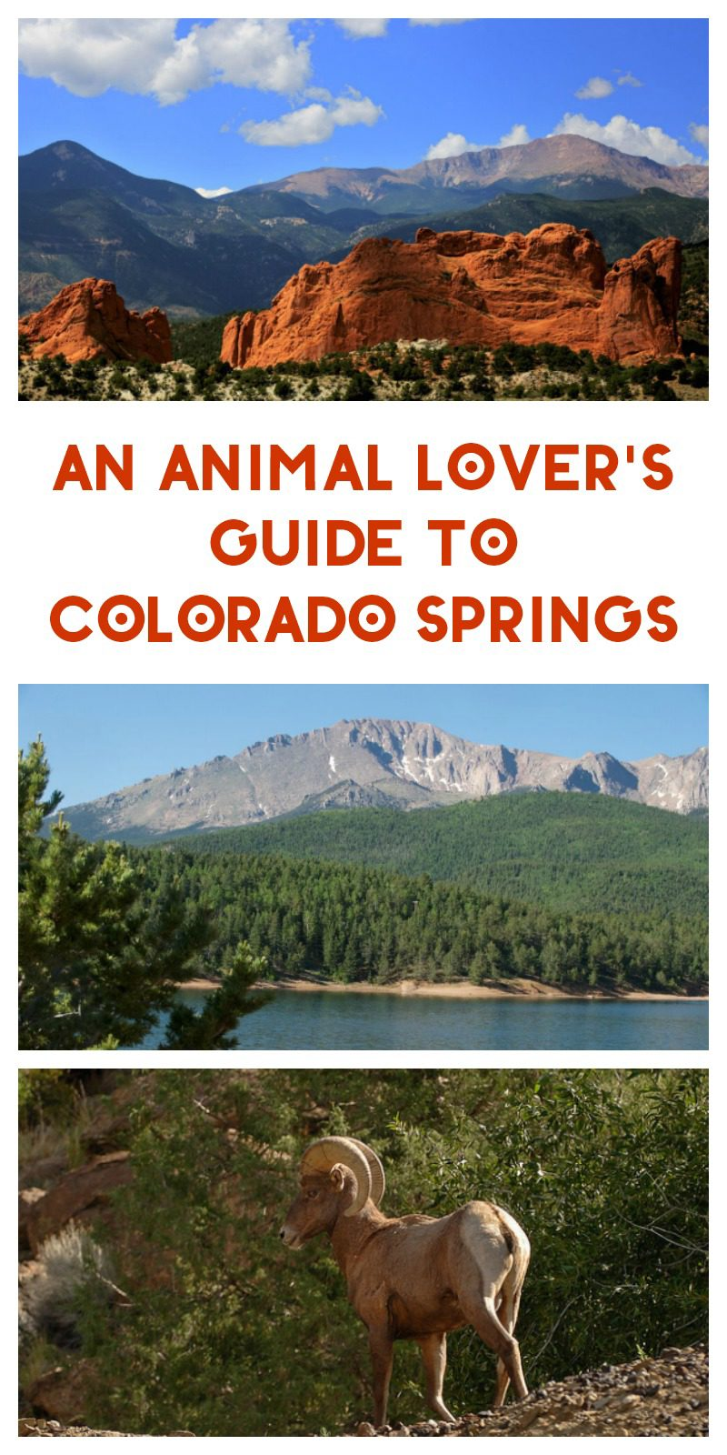 vacation planning tips visit denver download pdf
