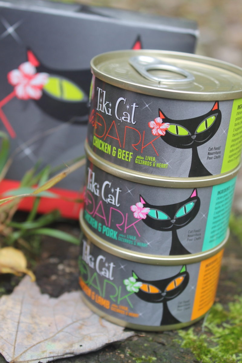 Satisfy Your Cat's Craving for Something New with Tiki Cat After Dark