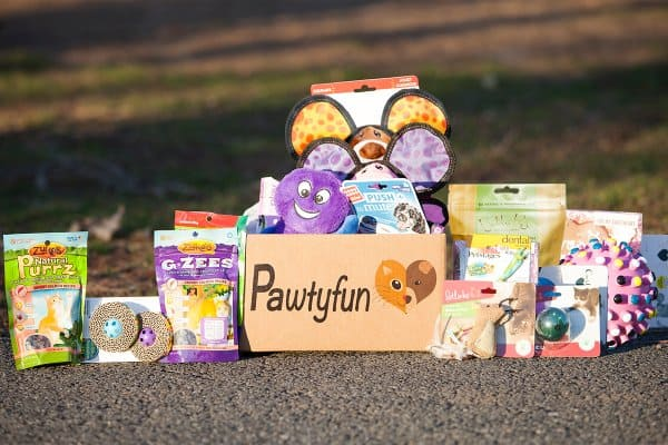 10 Fabulous Pet Subscription Boxes Your Cats & Dogs Are Begging For!