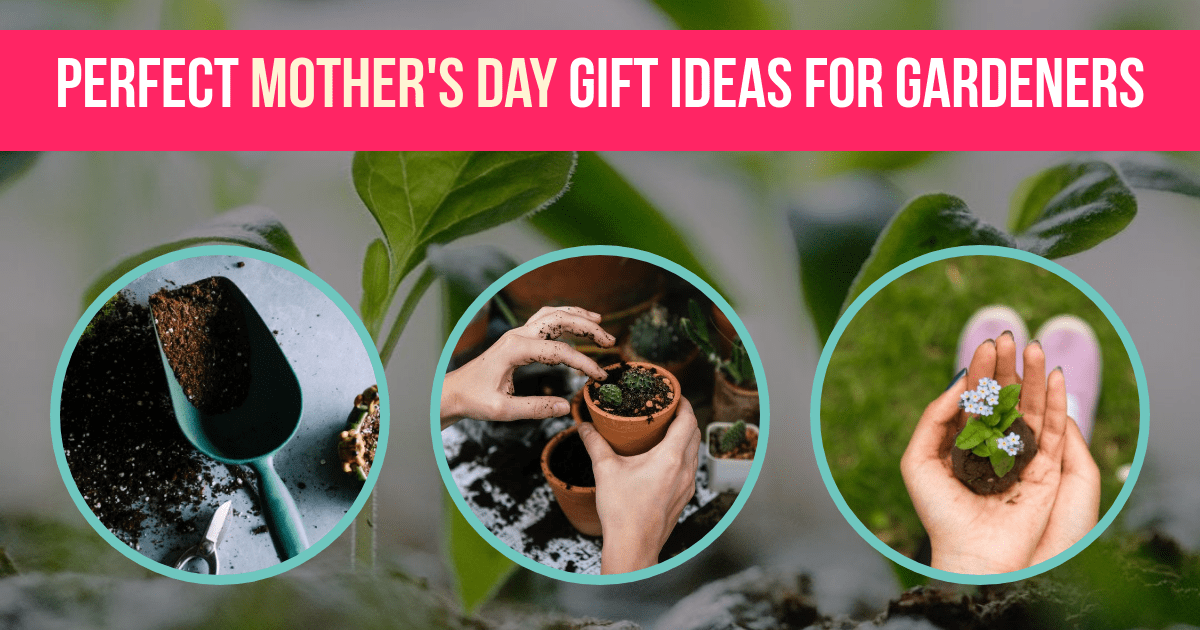 10 Perfect Mother\'s Day Gift Ideas for Gardeners
