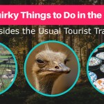 35 Fun & Quirky Things to Do in the Poconos (That Aren't the Usual Tourist Traps)