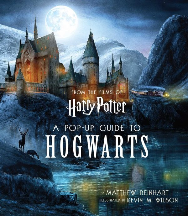 81ugxx4qL 20 Harry Potter Books Every True Fan Should Own