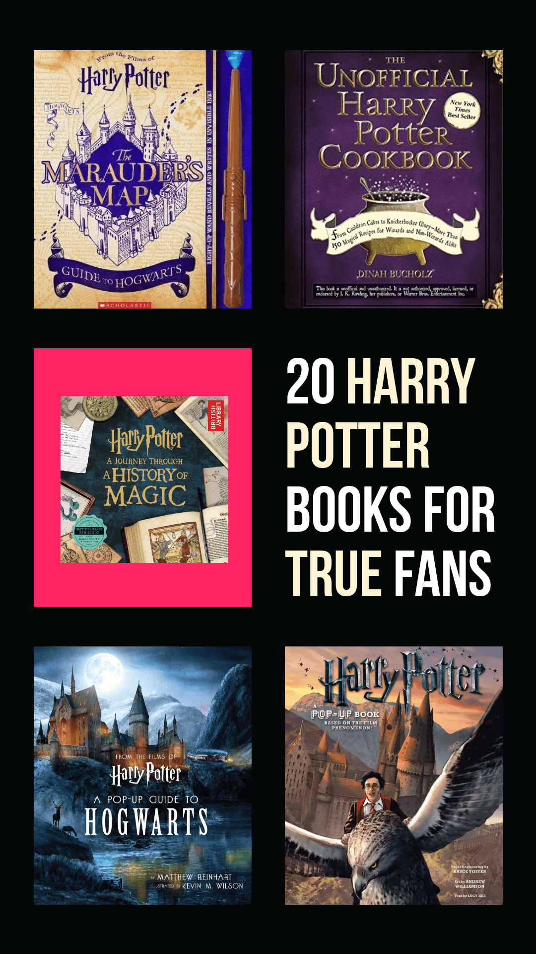 Did you know that this year is Harry Potter's 20th Anniversary in the US?  If you're as obsessed with The Boy Who Lived as I am, you'll want to grab these 20 must-have books for true Harry Potter fans!