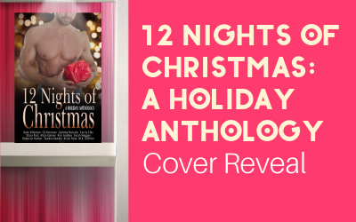 Pre-Order Twelve Nights of Christmas & Help Stop Hunger! (Cover Reveal)