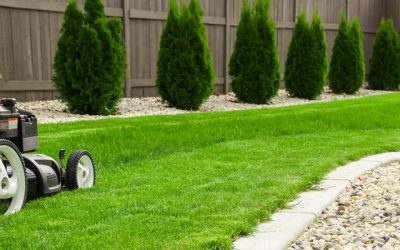 Top Rules Of (A Green) Thumb: Tips For Mowing Your Lawn