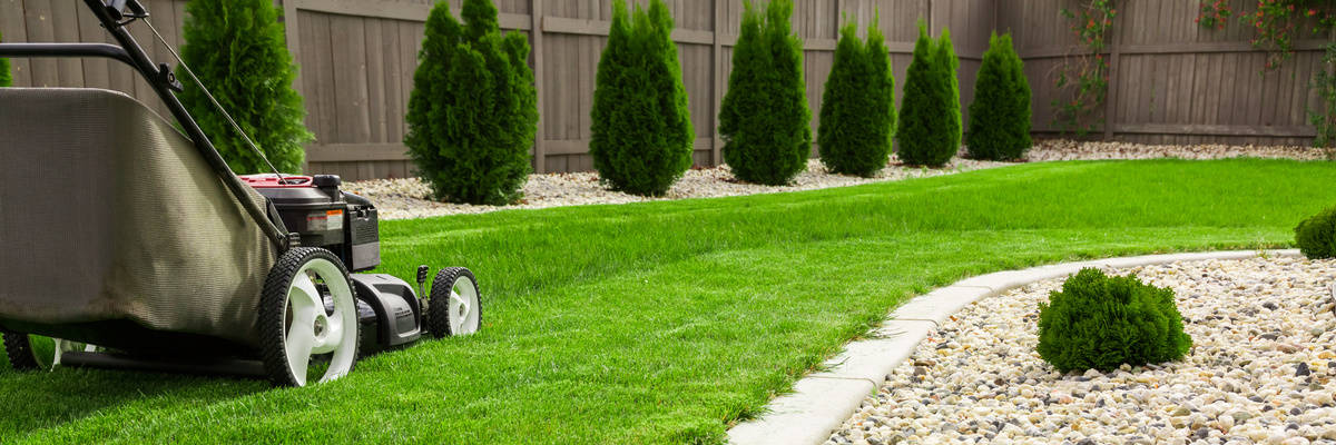 85781068 Subscription S Top Rules Of (A Green) Thumb: Tips For Mowing Your Lawn