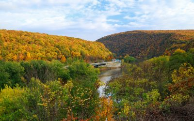 25 Fun Facts About the Poconos
