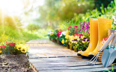 How To Prep Your Organic Vegetable Garden For Winter