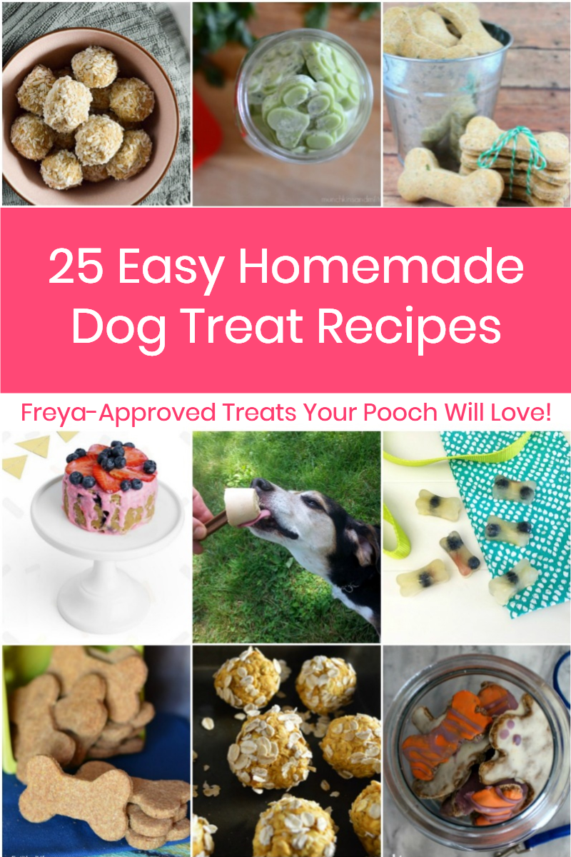 Want to save money and give your dog a healthier snack where you control the ingredients? Try these easy homemade dog treats recipes your pooch will devour!
