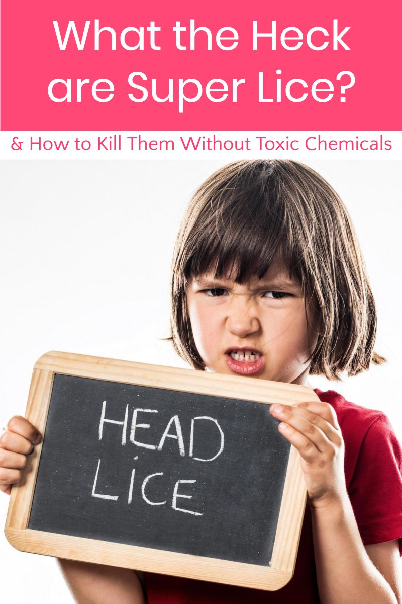 What the heck are super lice and how to you kill them without toxic chemicals? Read on for your complete guide to combating these creepy crawlers...just in time for summer camp season!
