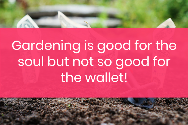 gardening is expensive 10 Ways You're Wasting Money (Even When You Think You're Saving It)