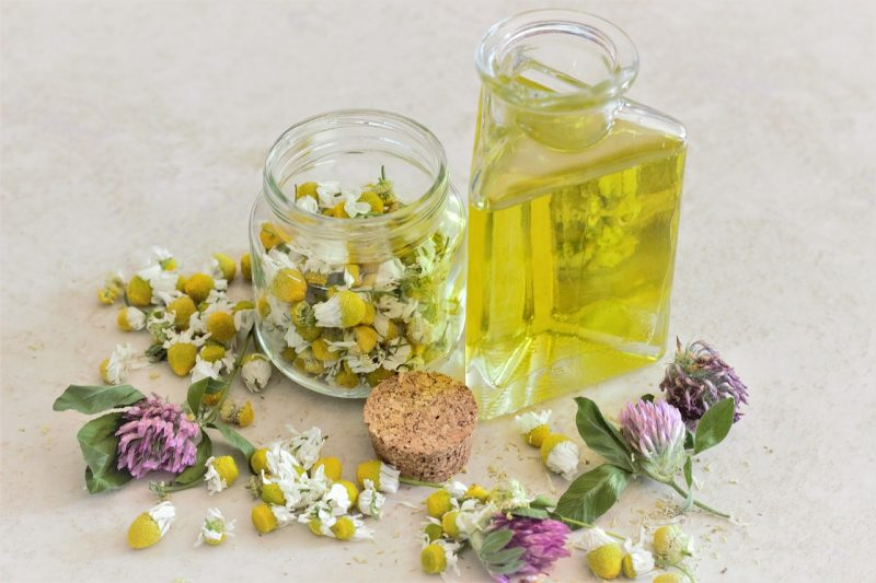 Chamomile 6  Essential Oils to Keep in Your First Aid Kit