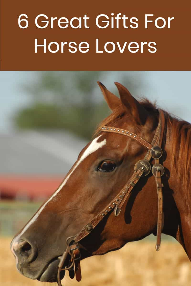 6 Great Gifts For the Horse Lover In Your Life