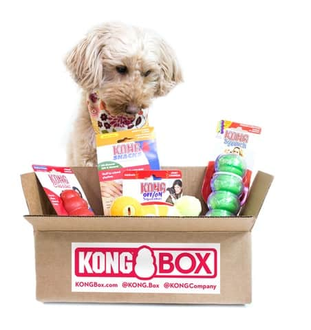 Kong Box 1 2019 Holiday Gift Guide for All Ages