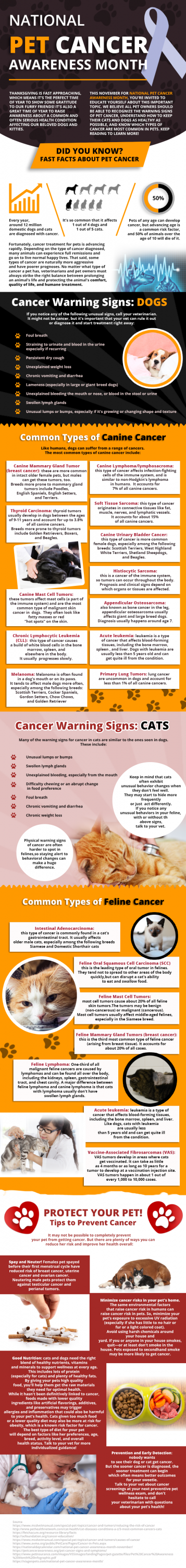 What do you know about pet cancer? I'm betting not as much as you think. Take a look at warning signs for both cats & dogs, as well as some prevention tips for both.