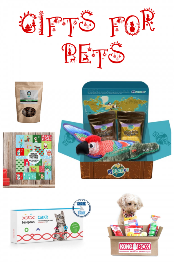 From awesome pet subscription boxes to cool toys to tasty treats, I've chosen the best of the best gifts for dogs to share with you below