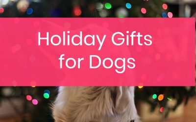 10 Holiday Gifts Your Dogs Are Absolutely Begging You to Get Them