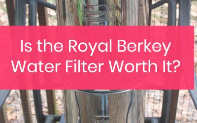 The Royal Berkey Water Filter System: Is it a Good Buy?